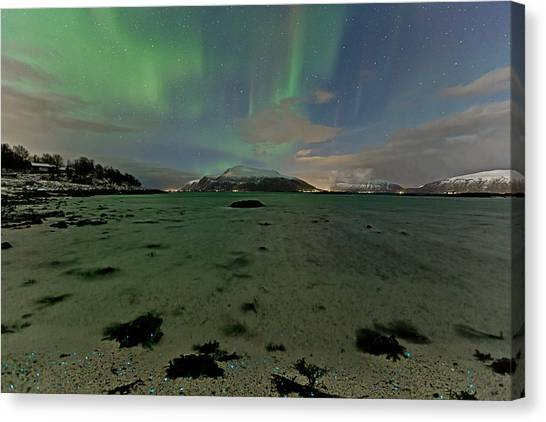 Green Sky Over The Beach Canvas Print by Frank Olsen