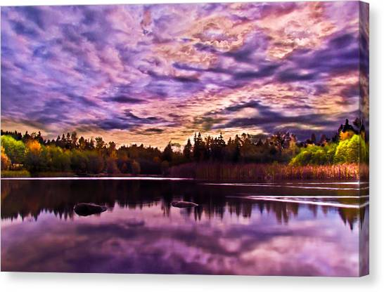 Green Timbers Park At Sunset Canvas Print