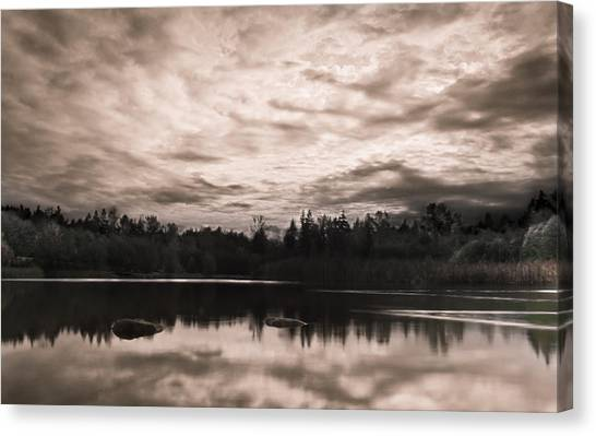Green Timbers Park At Sunset - Sepia Canvas Print