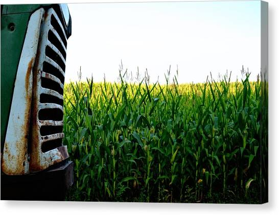Corn Maze Canvas Print - Green Tractor by Kevin Maas