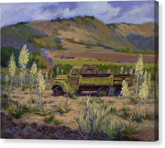 Green Truck- Blooming Yuccas Canvas Print