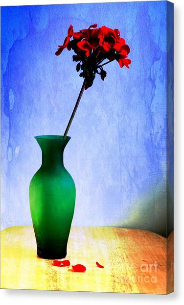Green Vase 2 Canvas Print by Donald Davis