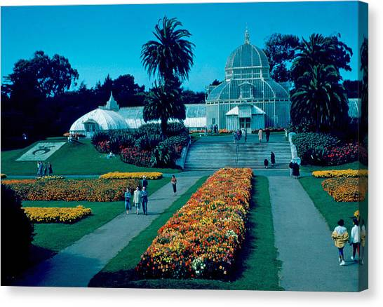 Greenhouse 1955 Canvas Print by Cumberland Warden
