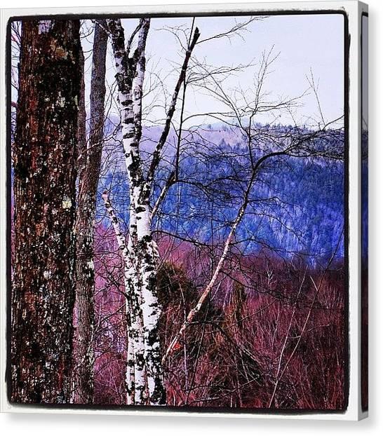 Vermont Canvas Print - #green#mountains#vermont#winter#2013 by Matt Yates