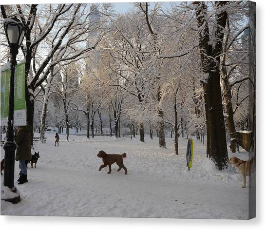 Greeting Friends In Central Park Canvas Print