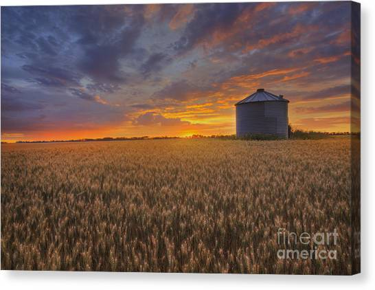 Greeting The Sun Canvas Print