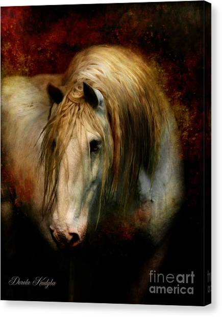 Draft Horses Canvas Print - Grey Dignity by Dorota Kudyba