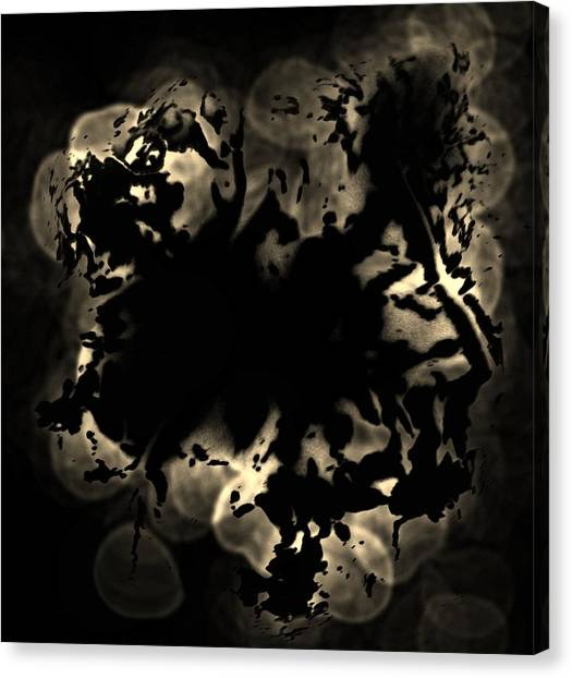 Grey Matter Canvas Print by Tara Miller