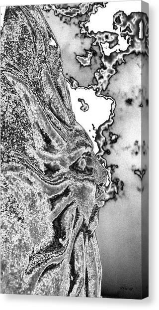 Grey Skies  Canvas Print by Rebecca Flaig