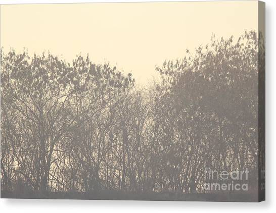 Grey Canvas Print by Vishakha Bhagat