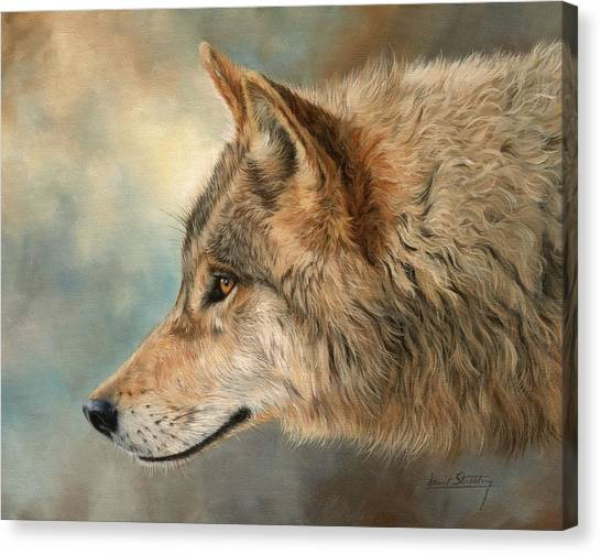 Grey Wolf 3 Canvas Print