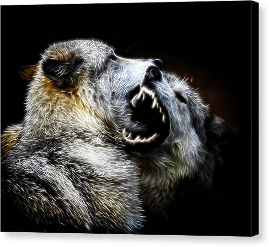 Grey Wolf Fight Canvas Print