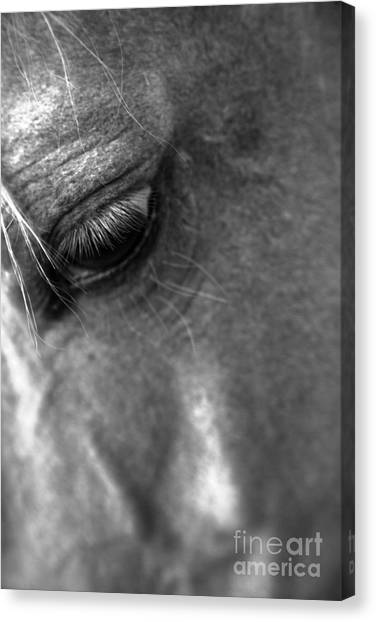 Grief Canvas Print by Heather Roper