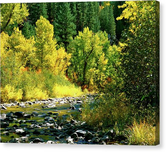 Boise National Forest Canvas Print - Grimes Creek Autumn Boise County Idaho by Ed  Riche