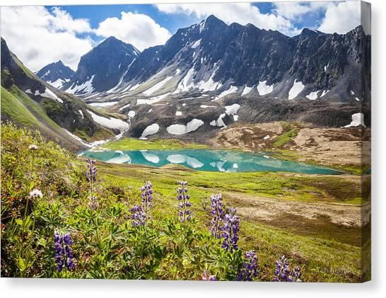 Grizzly Bear Lake Canvas Print