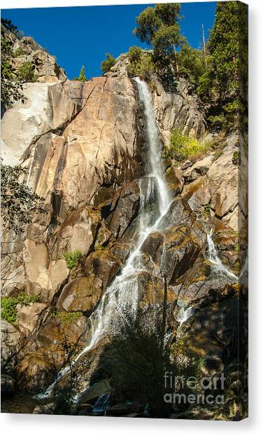 Grizzly Falls 1-7773 Canvas Print