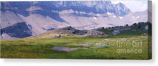 Grizzly Meadows Canvas Print