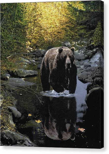 Grizzly Reflection Canvas Print