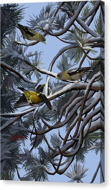 Grosbeaks On Tree Limbs Canvas Print