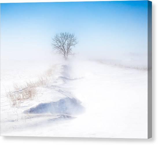 Ground Blizzard Canvas Print