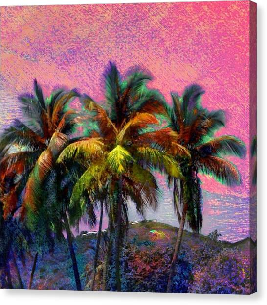 Grove Of Coconut Trees - Square Canvas Print