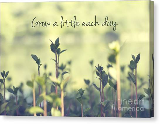 Grow A Little Each Day Inspirational Green Shoots And Leaves Canvas Print