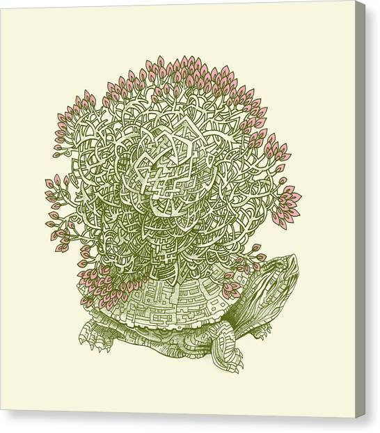 Turtles Canvas Print - Grow by Eric Fan