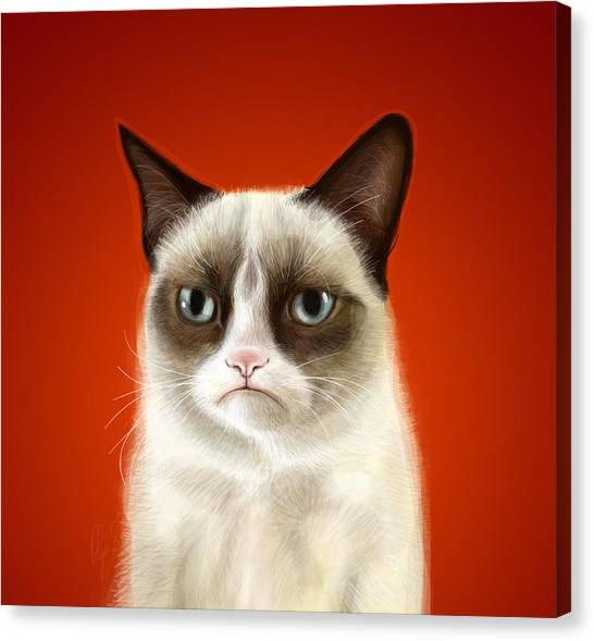 Pets Canvas Print - Grumpy Cat by Olga Shvartsur