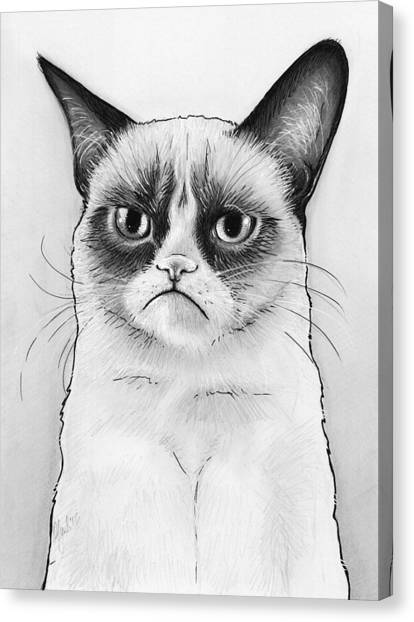 Cat Canvas Print - Grumpy Cat Portrait by Olga Shvartsur