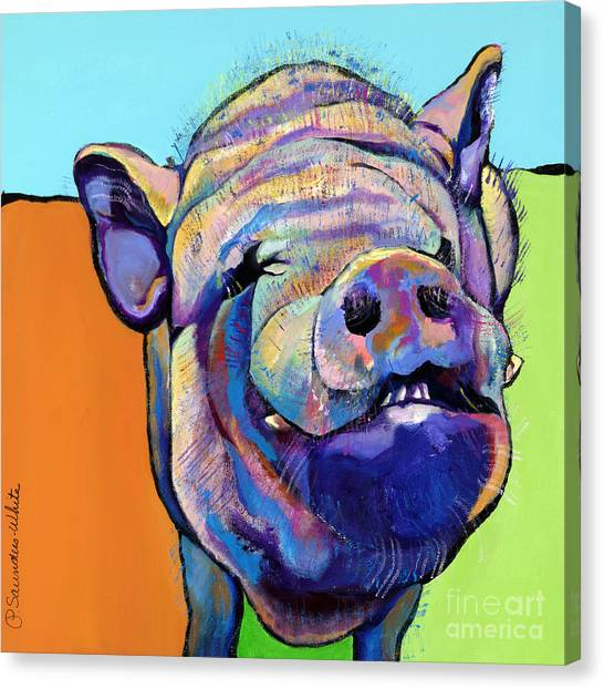 Farm Animals Canvas Print - Grunt    by Pat Saunders-White