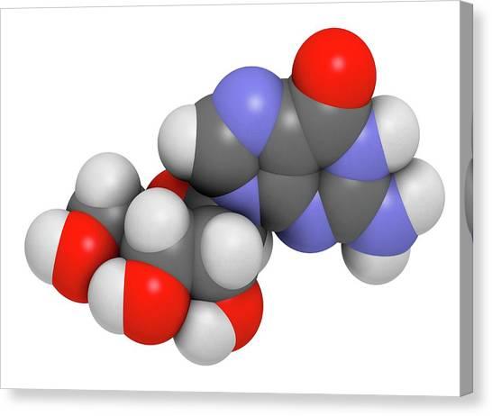 Biochemistry Canvas Print - Guanosine Purine Nucleoside Molecule by Molekuul