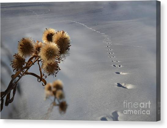 Guardian Of The Windswept Trail Canvas Print by The Stone Age