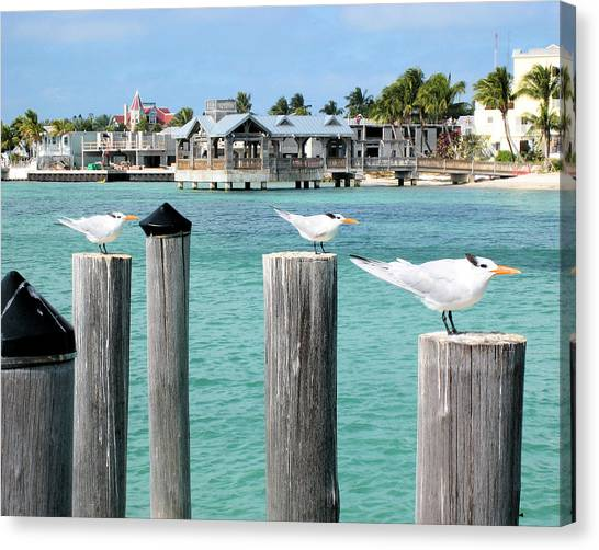 Guardians Of Key West Canvas Print