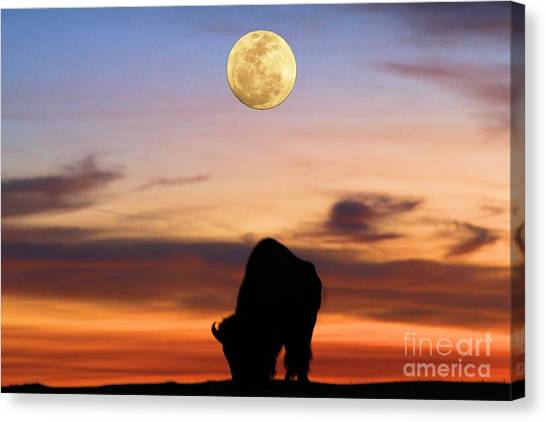 Under The Moon Canvas Print - Guiding Light by Adam Jewell
