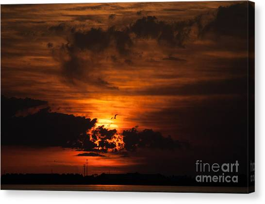 Gulf Coast Sunset 1 Canvas Print