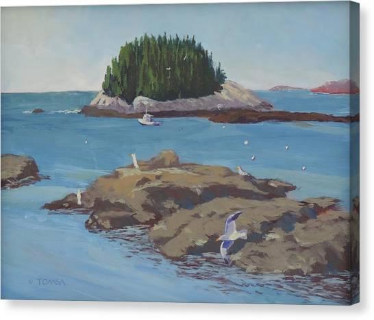 Gulls At Five Islands Canvas Print