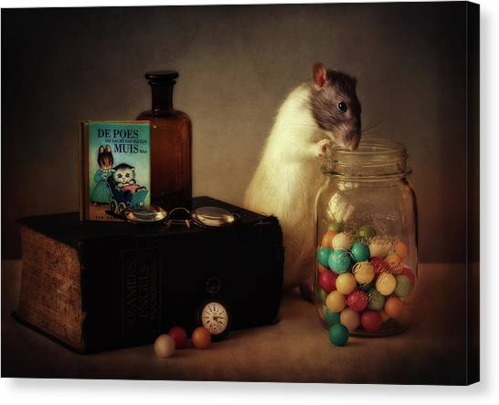Holland Canvas Print - Gumballs (published In The New 1x Book memento.) by Ellen Van Deelen