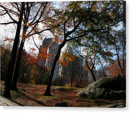 Guy On A Rock In Central Park Canvas Print