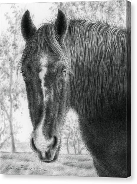 Draft Horses Canvas Print - Gwen In The Late Fall by Katherine Plumer