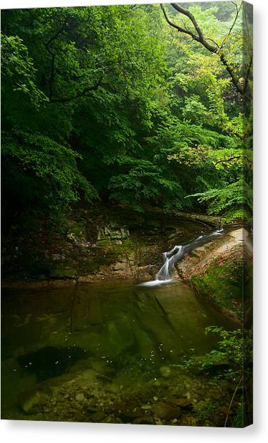 Canvas Print featuring the photograph Gyeryongsan Stream And Pool by Brad Brizek
