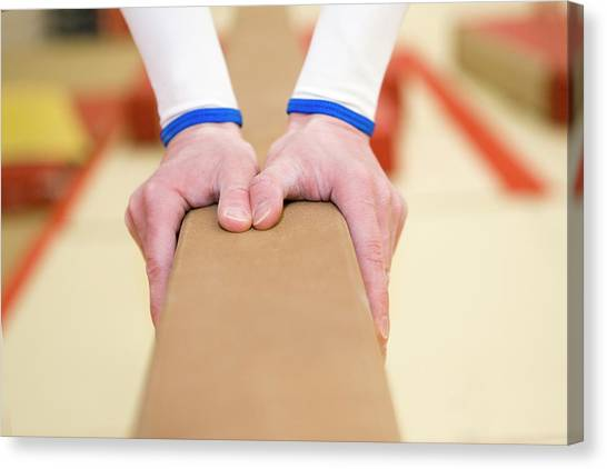 Balance Beam Canvas Print - Gymnasts Hands by Gustoimages/science Photo Library