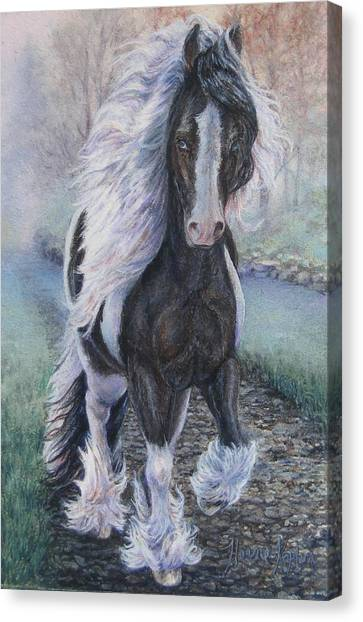 Foggy Morning Stroll Gypsy Horse  Canvas Print