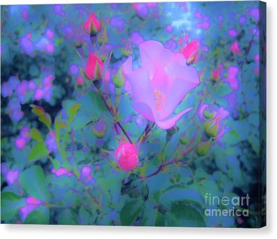 Gypsy Rose - Flora - Garden Canvas Print
