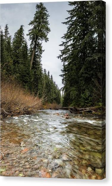 Canvas Print featuring the photograph Hackleman Creek  by Belinda Greb