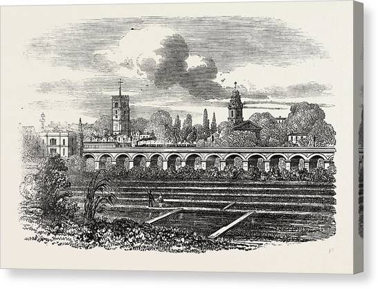 Watercress Canvas Print - Hackney Station, And Watercress Plantation by English School