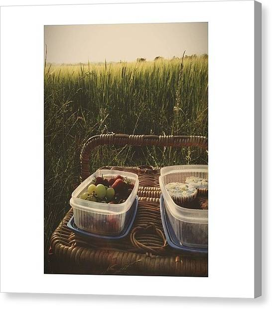 Fruit Baskets Canvas Print - Had A Picnic Dinner While Watching The by Katie Mcatackney