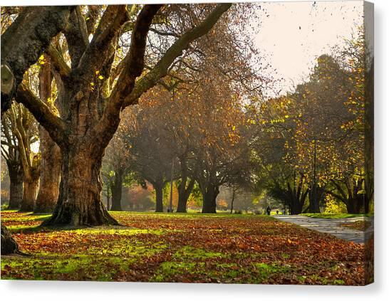 Hagley In Autumn Canvas Print