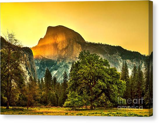 Yosemite Canvas Print - Half Dome Sunrise by Az Jackson
