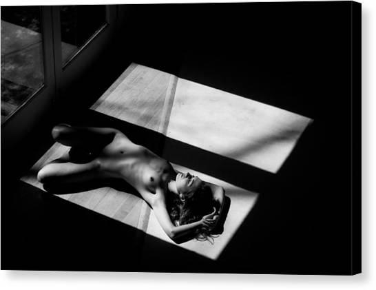 Indoors Canvas Print - Half by Jae