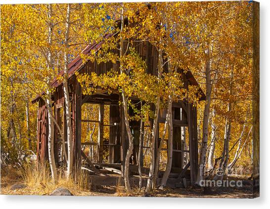Hallowed Home Canvas Print